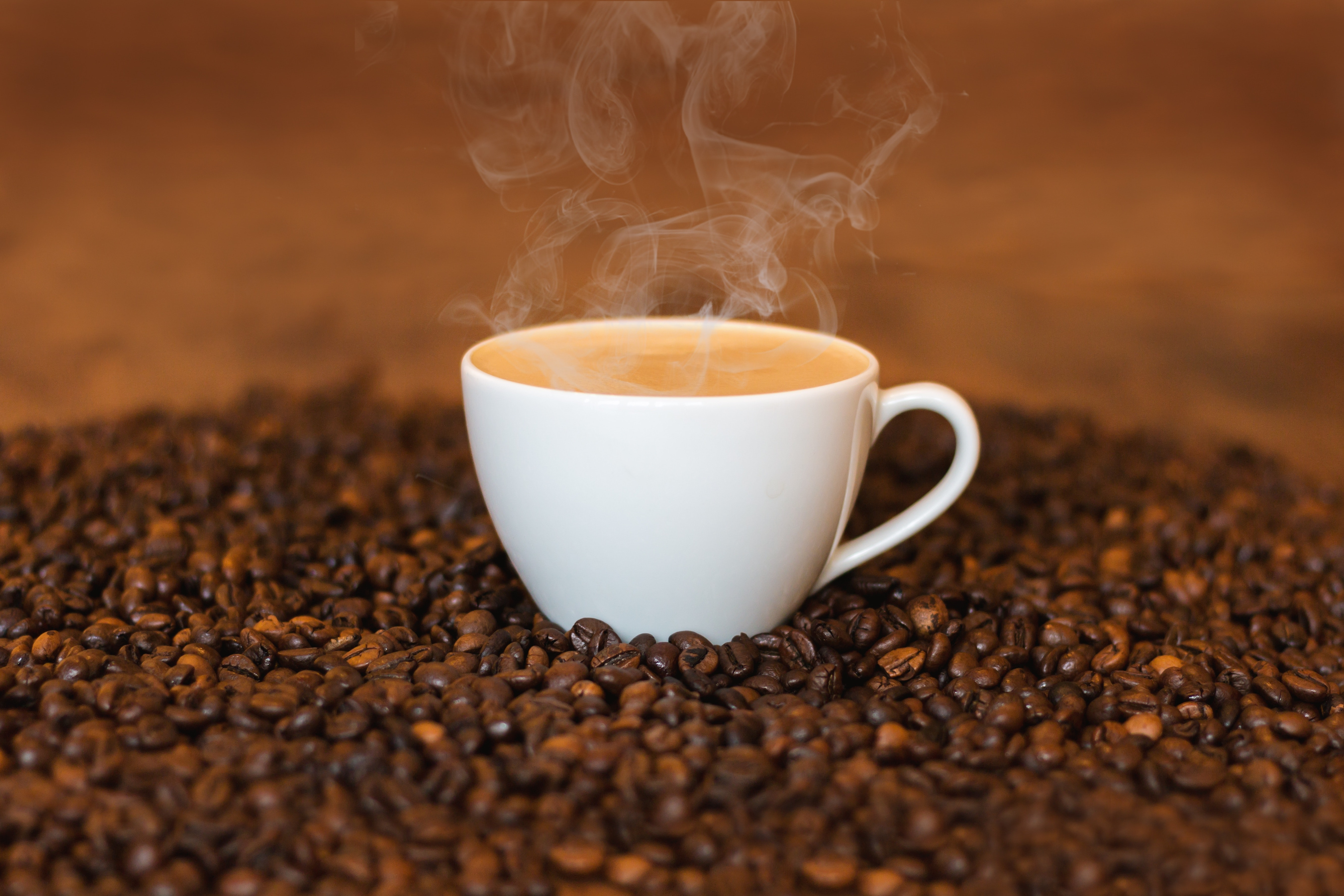Learn about a brief history of Lavazza coffee.